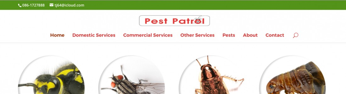 Pest Patrol Website Project